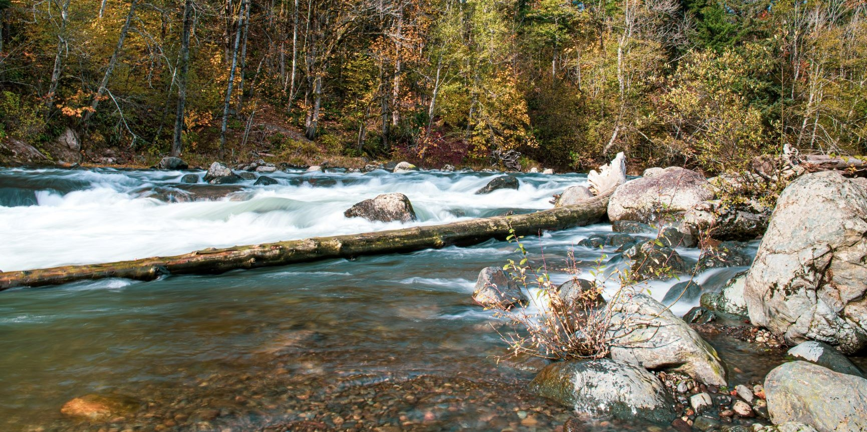 image of rushing river over rocks. Rocks in foreground and a fallen log. Trees in the background.