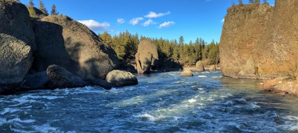 Spokane River. Rocks and trees and flowing river.